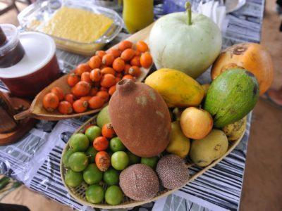 Assunto: travessa de frutas da amazonia com pajura - cupuacu -tucuma - abobora Local: Santarem - PA Data: 03/2017 Autor: Chico Ferreira
