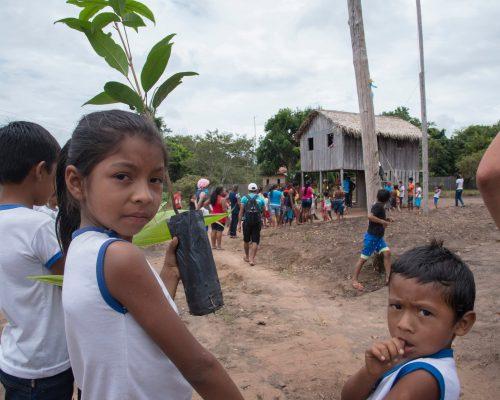 Assunto:  Criancas da comunidade de ribeirinhos com mudas de plantas nativas na Resex na comunidade da cabeceira do Amorim do rio Tapajos (LUI - Uso de imagem autorizado - ribeirinhos da Cabeceira do Amorim )  Local: Santarem, PA  Data: 03/2017 Autor: Luciana Whitaker